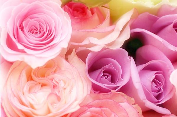 ピンクや紫の花束